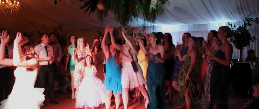 Bride Throwing Bouquet at Wedding Reception