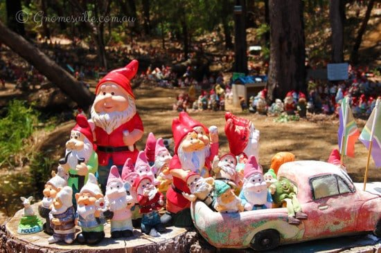 A collection of gnomes at gnomesville