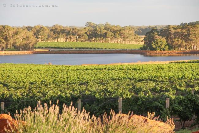 Watershed Wines Lake